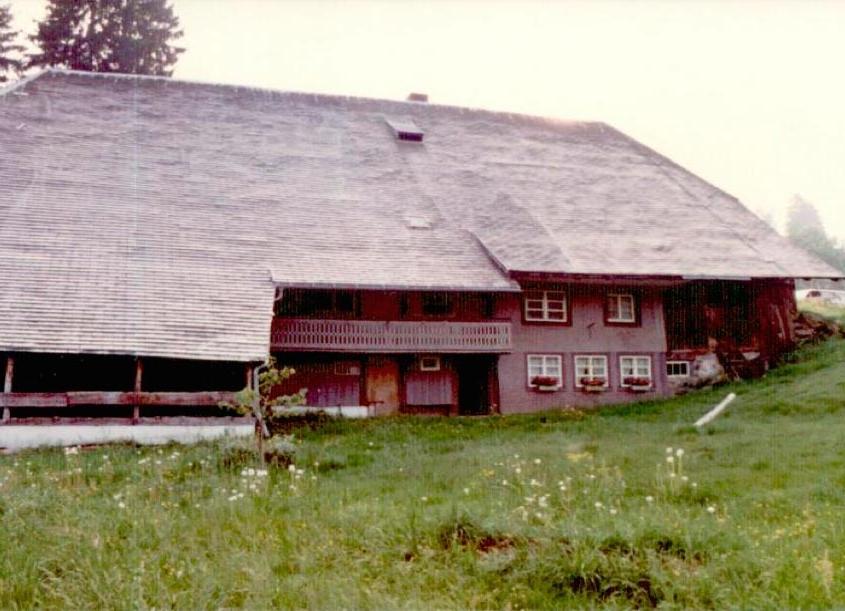 Rückseite des Henslerhofs vor der Sanierung